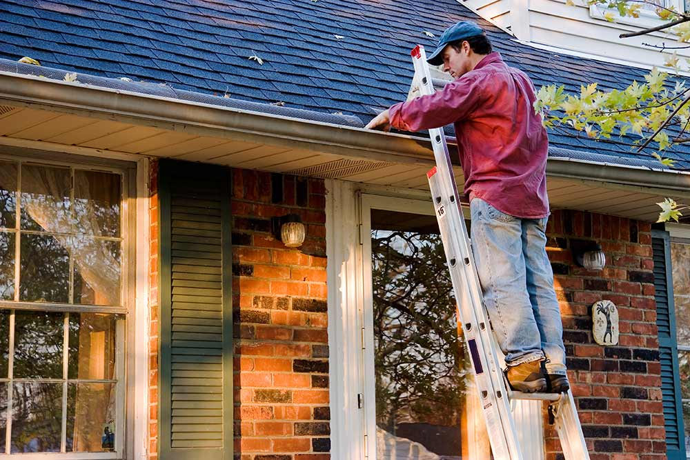 Cellar Door Home Inspection Gutters