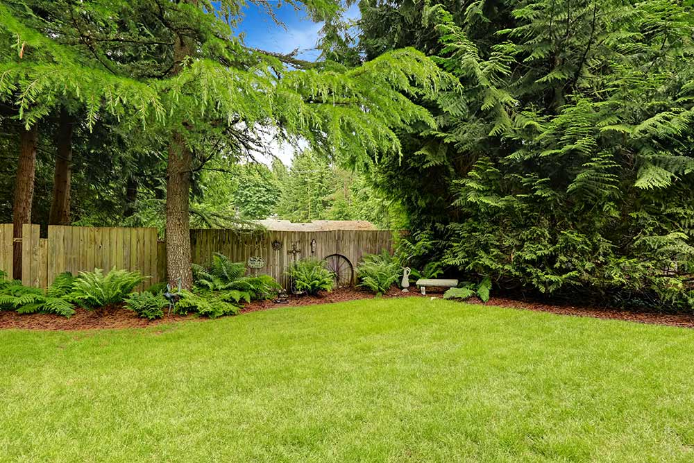 How To Solve Negative Drainage With Landscaping