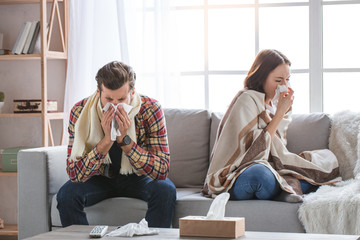 Biological Pollutants In The Home